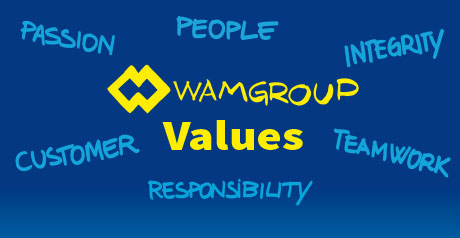 """buy popular bf2d4 88343 WAMGROUP """"Values"""" Video"""